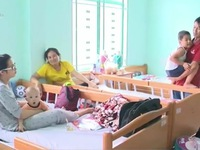 Khánh Hòa: Gia tăng bệnh nhân nhập viện do sốt xuất huyết
