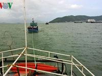 Khánh Hòa: Cứu 12 thuyền viên cùng tàu cá bị nạn trên biển