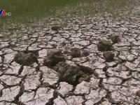 UNICEF hỗ trợ 4 triệu USD khắc phục hạn hán, xâm nhập mặn