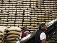 Thái Lan sẽ bán đấu giá 3,8 triệu tấn gạo trong tháng 7