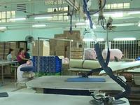 Thi hành án không đúng đối tượng, 500 công nhân đứng trước nguy cơ mất việc