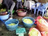 Việt Nam đứng thứ 2 thế giới về tỷ lệ mắc ung thư