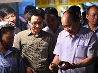 Thủ tướng kiểm tra an toàn thực phẩm