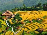 'Why Vietnam' quảng bá hình ảnh Việt Nam ra thế giới
