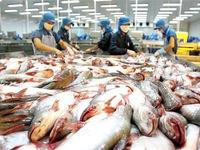 EU trả về 17 lô hàng nông, thủy sản của Việt Nam