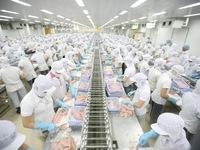 ASEAN tăng nhập khẩu thủy sản từ Việt Nam
