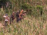 Công an Sơn La bắt nhóm tội phạm ma túy có vũ khí