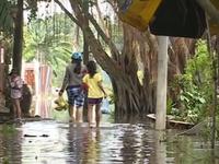 Nỗi khổ ngập nước vì vỡ bờ bao nội đồng ở TP.HCM