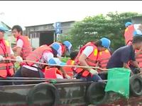 Sinh viên và trẻ em Chợ nổi Cái Răng vớt rác trên sông