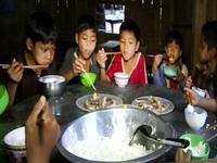 Gạo Chính phủ góp phần cải thiện điều kiện học tập ở vùng cao Quảng Nam