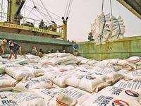 Chính ngạch chưa thông, xuất khẩu gạo sang Trung Quốc gặp khó