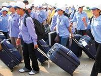 Thêm 2 công ty xuất khẩu lao động bị xử phạt