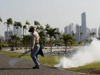 Malaysia xác nhận thai phụ đầu tiên nhiễm virus Zika