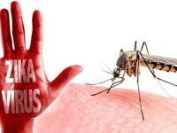 Thêm 2 ca nhiễm virus Zika tại TP.HCM