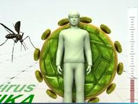 Singapore và Philippines phát hiện ca nhiễm virus Zika mới