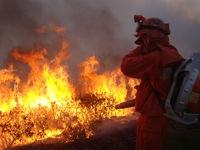Trung Quốc: Gần 8.000 người nỗ lực dập tắt đám cháy rừng