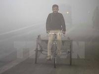 Thủ đô New Delhi đóng cửa tất cả các trường học do ô nhiễm không khí