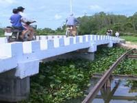 Phú Yên hoàn thành nhiều cây cầu vượt lũ trước năm học mới