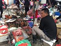 Bất chấp nguy cơ cúm A/H7N9, gia cầm không rõ nguồn gốc vẫn bày bán tràn lan