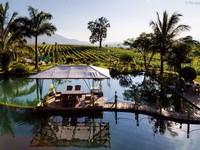 Aythaya - Xứ sở rượu vang nổi tiếng của Myanmar