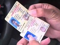 Cách nhận biết giấy phép lái xe ô tô giả hay thật