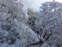 Tuyệt đẹp đỉnh Fansipan trắng xóa trong băng tuyết