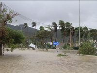 Tìm nguyên nhân gây thiệt hại nặng do bão số 12 tại Khánh Hòa