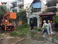 Bão số 12 càn quét Khánh Hòa, nhiều nhà dân bị đổ sập, hư hỏng nặng