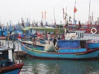 Dự báo sáng 4/11 bão số 12 sẽ đổ bộ vào các tỉnh Nam Trung Bộ