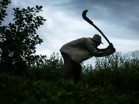 Sốc với tình trạng 'nô lệ thời hiện đại' ở Brazil