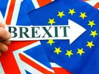 Brexit cứng: Nhiều thách thức cho cả Anh và thị trường chung EU