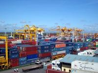 Chậm giảm thủ tục chuyên ngành, tỷ lệ hàng hóa phải kiểm tra hải quan tăng