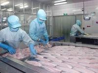 Mỹ áp thuế chống phá giá cá tra Việt Nam: Hoạt động xuất khẩu vẫn lẽ thường
