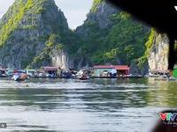 VTVTrip: Vịnh Lan Hạ - Bức phù điêu thiên tạo đẹp tuyệt vời