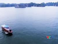 VTVTrip: Hải Phòng - Điểm đến bí ẩn còn nhiều điều khám phá