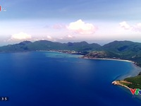 VTVTrip: Đến hòn Bảy Cạnh, Côn Đảo xem rùa biển đẻ trứng