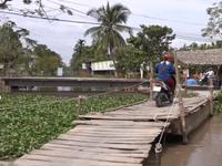 Hậu Giang: Có cầu qua sông dân vẫn phải trả tiền đò
