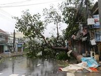 Vì sao bão số 12 gây thiệt hại nặng nề về người và tài sản?