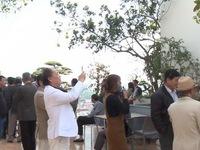 Hà Nội tôn vinh các nghệ nhân cây cảnh