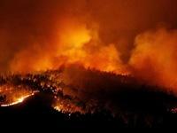 Cháy rừng ở Bồ Đào Nha, 24 người thiệt mạng