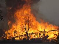 Mỹ: 26 người thiệt mạng trong vụ cháy rừng tại California