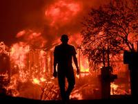 Mỹ: Vùng sản xuất rượu vang của California hóa thành tro vì cháy rừng