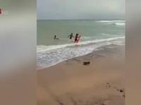 Một du khách Nga bị chết đuối do tắm biển lúc sóng lớn
