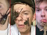 Kiếm bộn tiền từ thú chơi kỳ lạ với... côn trùng
