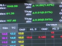 """""""Trái ngọt"""" từ những cổ phiếu tăng trưởng nóng, thanh khoản ít"""