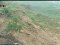 Quảng Ngãi: Dân tái định cư sống bất an trước nạn sạt lở núi