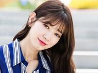 Park Shin Hye nhận 'cơn mưa' lời khen vì hành động nghĩa hiệp này