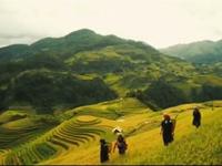 Năm APEC 2017: Cơ hội quảng bá hình ảnh Việt Nam