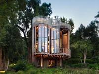 Nhà cây ấn tượng ở Nam Phi làm du khách 'mê mệt'