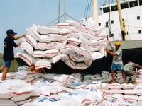 Chiến lược phát triển phân khúc xuất khẩu gạo